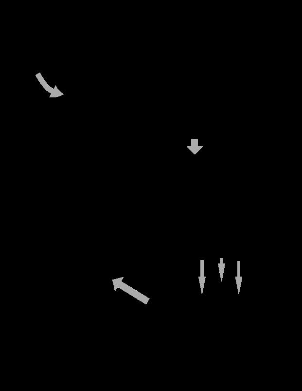 PaleoStove Directions